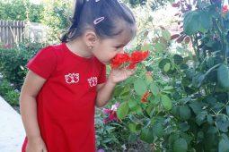 Hainute pentru copii de la Liloo.ro